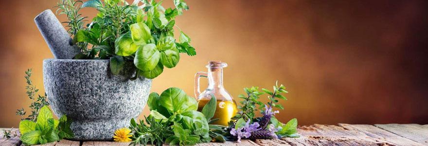 Alimentation plantes